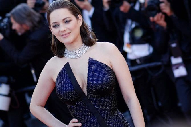 Марион Котийяр фото в синем платье