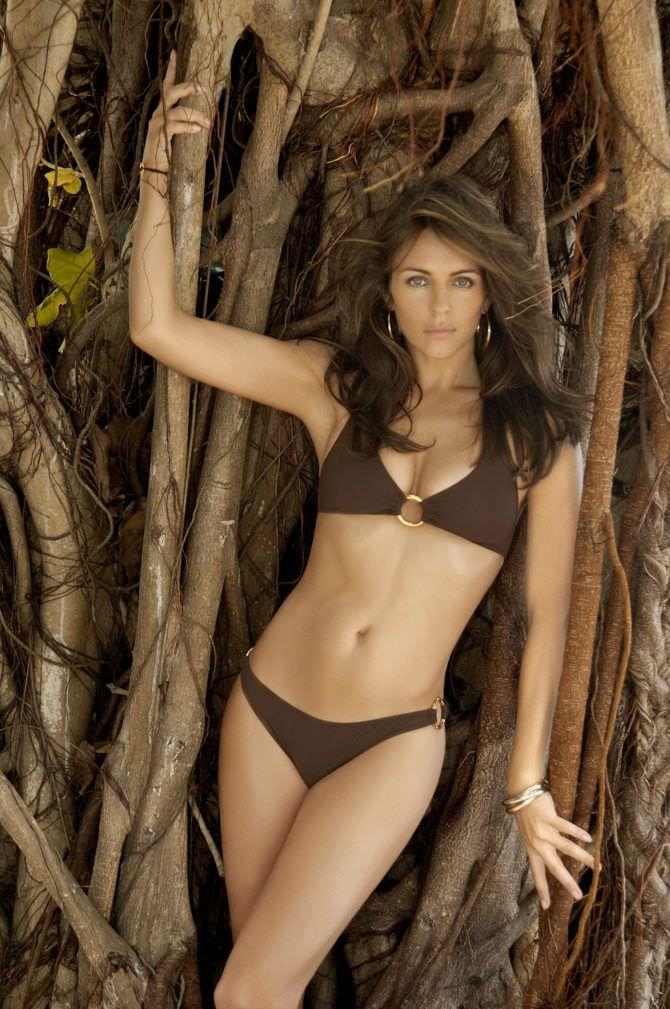 Элизабет Хёрли фото в коричневом купальнике