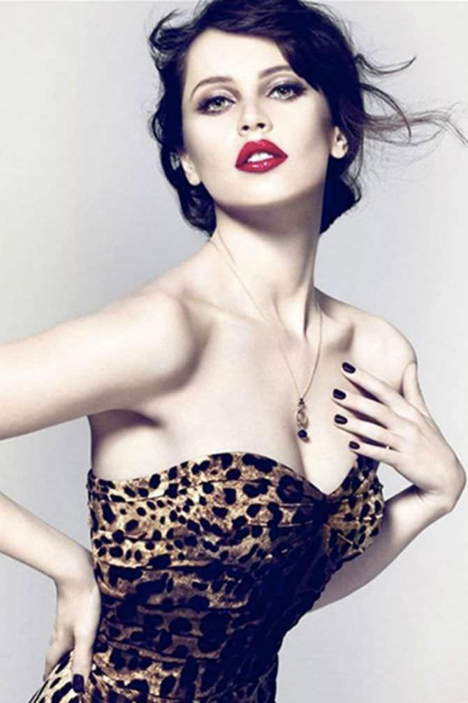 Фелисити Джонс фото в леопардовом корсете
