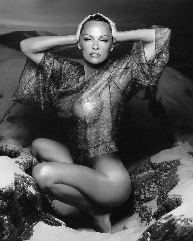 Памела Андерсон фото в прозрачной блузке
