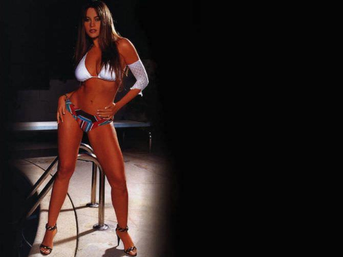 София Вергара фото в цветных плавках