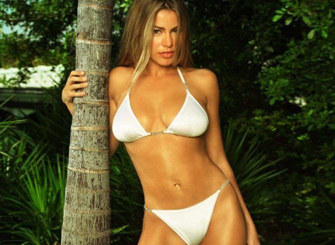 София Вергара фото в бикини рядом с пальмой